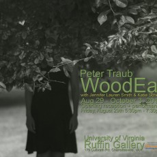 WoodEar opening at UVa's Ruffin Gallery, August 29 – October 3rd, 2014.